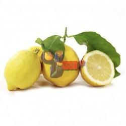 Limoni Naturali di Sorrento